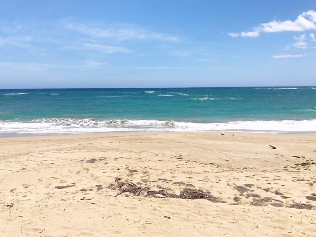 пляж в 60 м
